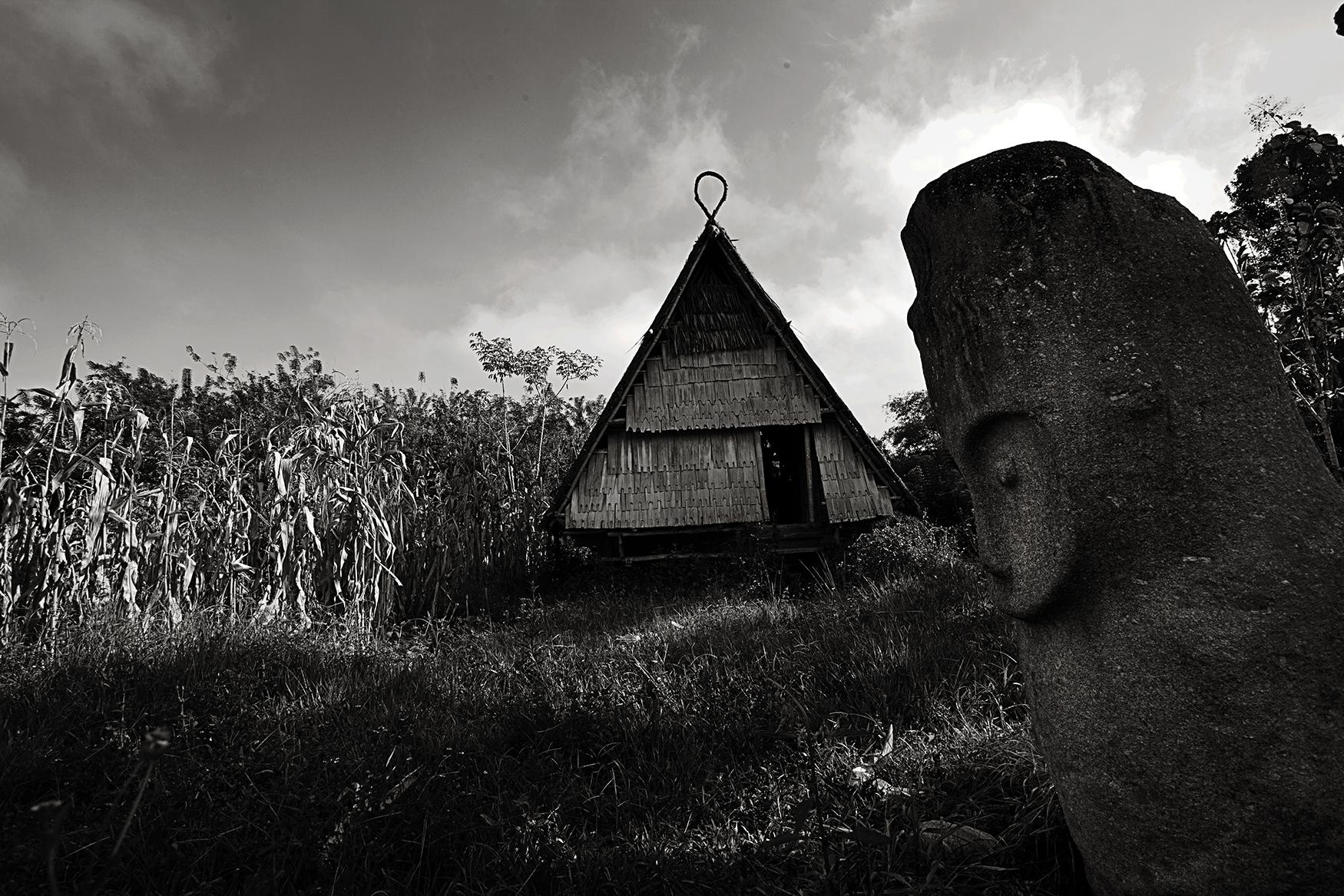 Indonesian Landscape 24