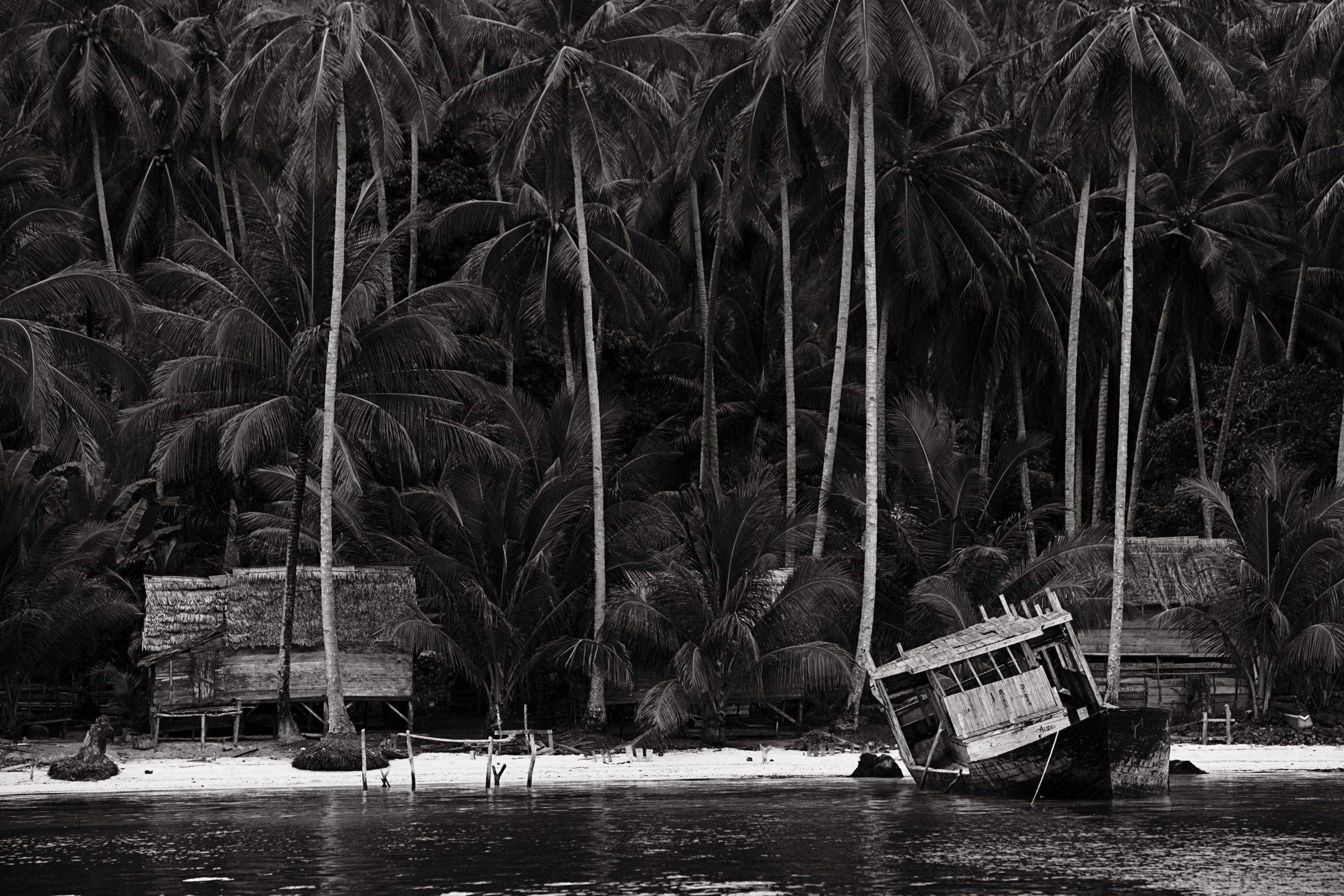 Indonesian Landscape 37